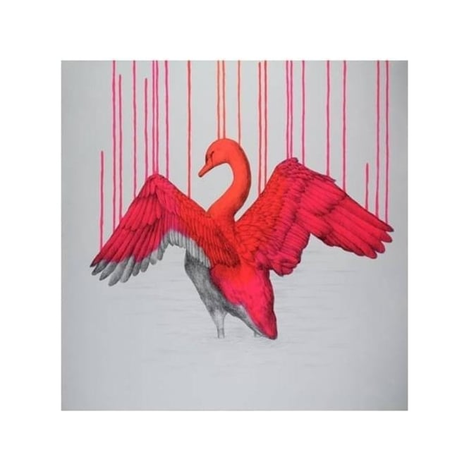 Louise McNaught - Beautifully Wild