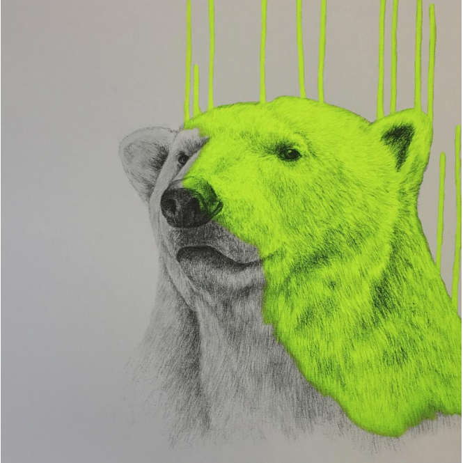 Louise McNaught - Hey There, Polar Bear - Neon Yellow