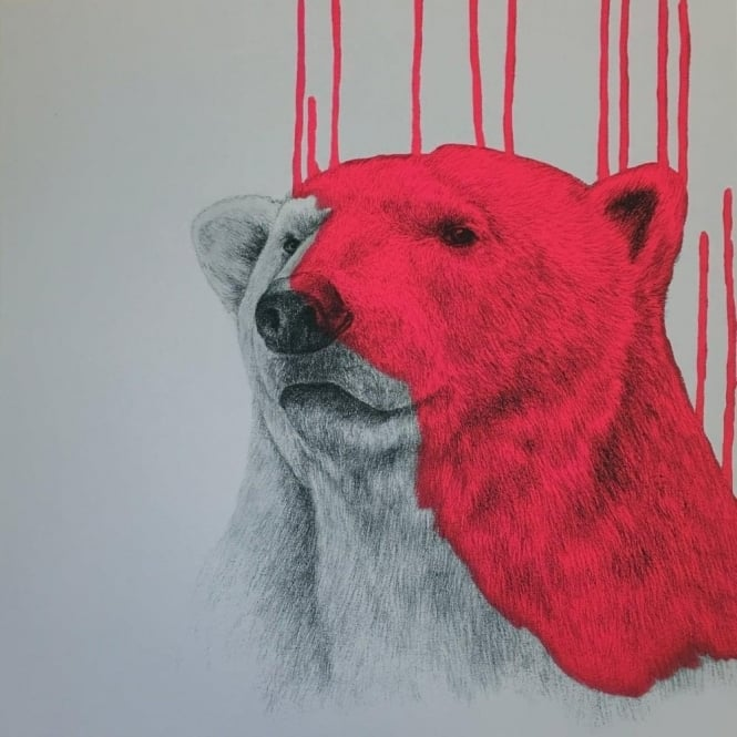 Louise McNaught - Hey There, Polar Bear - Pink