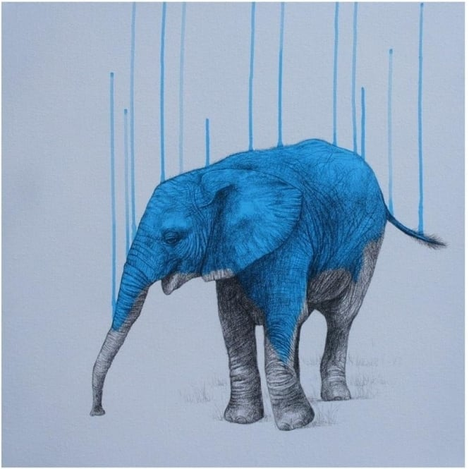 Louise McNaught - Wild Strength