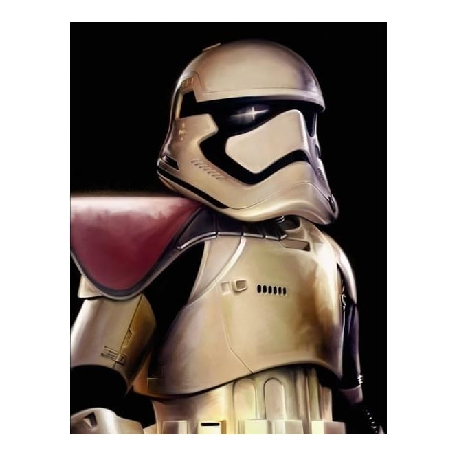 Star Wars - First Order Trooper (canvas)