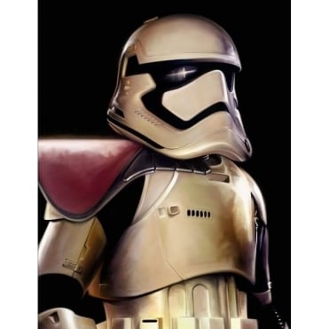 First Order Trooper (canvas)