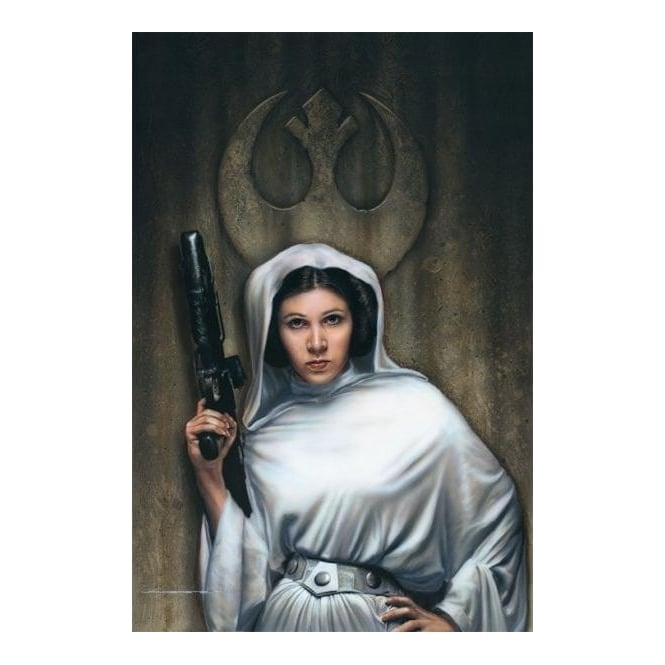Star Wars - Rebel Princess (canvas)